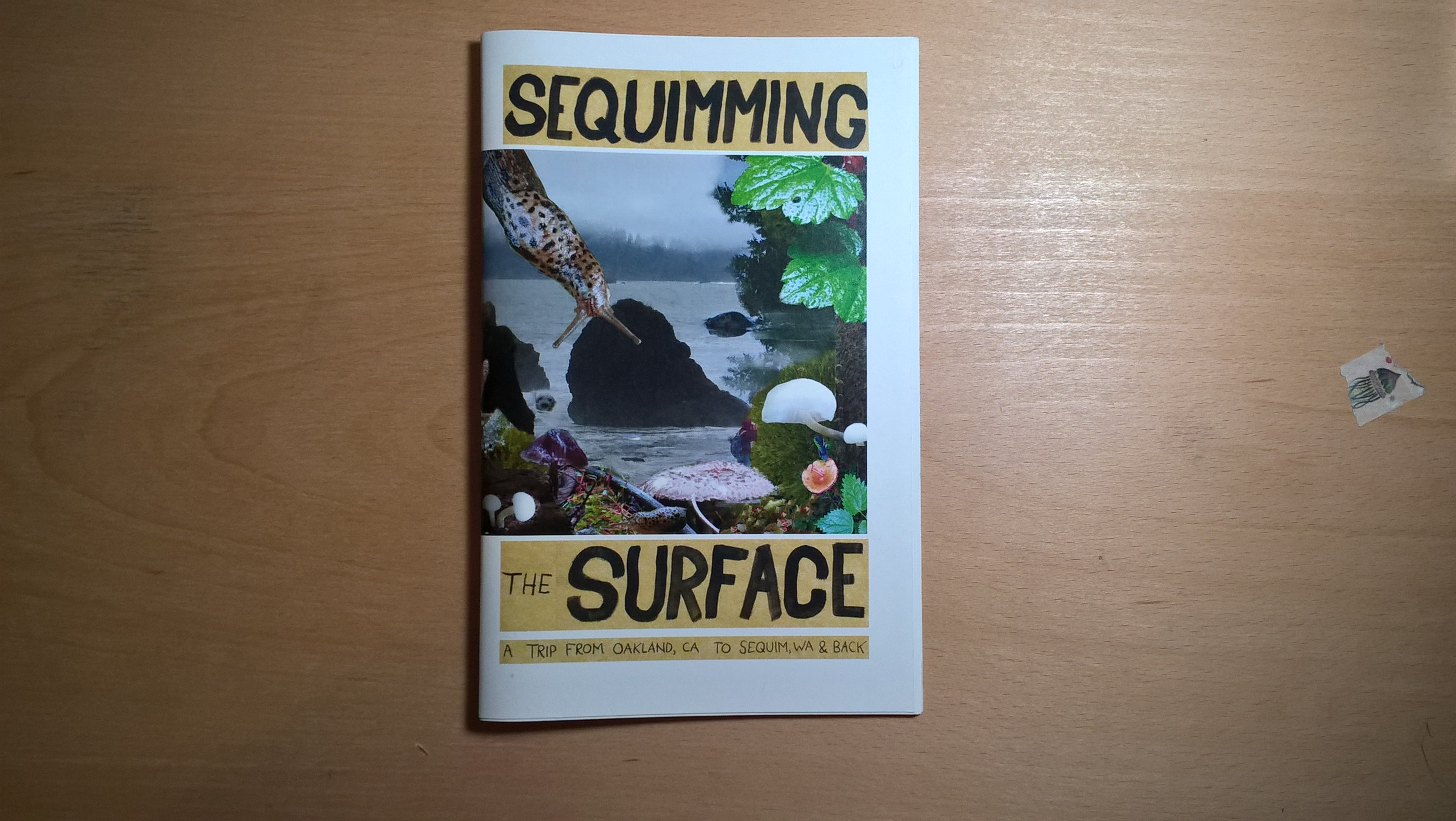 Sequimming The Surface Zine